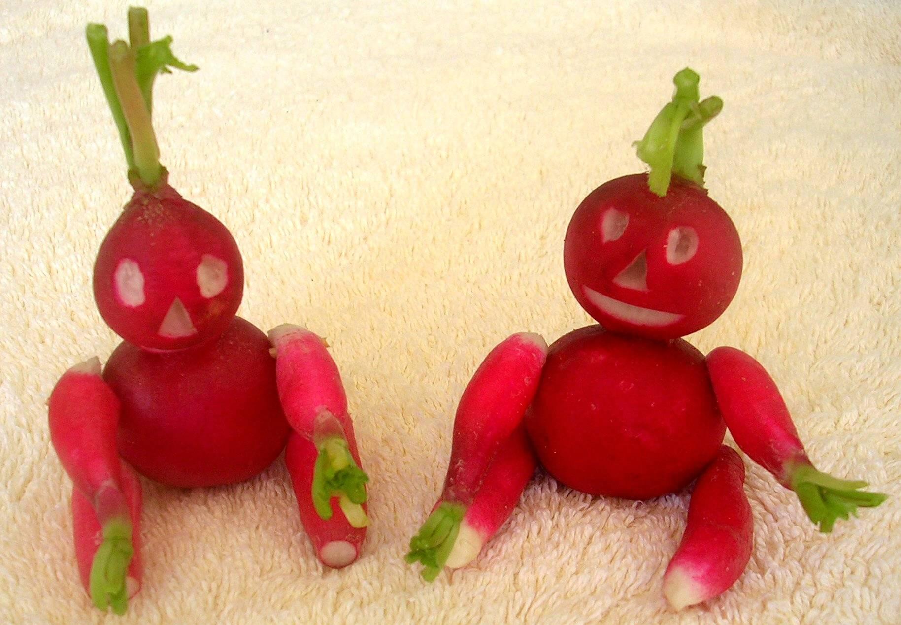 Decoration Legumes Radis : Mai « amap dijon les paniers d honoré panier bio