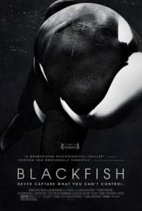 Blackfich